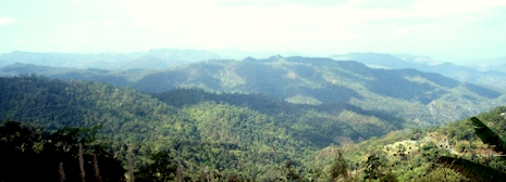Mountainous, forested area around Pang Kham, Mae Hong Son province, right into Burma / Myanmar