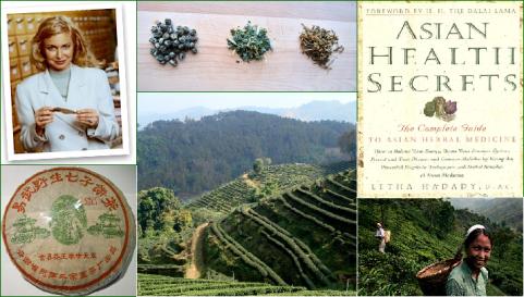 Letha Hadady: Asian Health Secrets, Collage