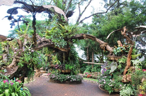 Royal Flower Garden, Doi Tung: Sculptures of art from green plants and flowers
