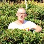SiamTeas founder Thomas Kasper sticking out of a Doi Tung tea garden
