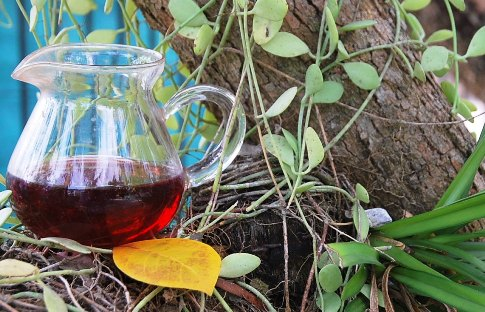 DMS Shi Er BlackPearls / Rosella Hibiscus Tea & Orchids