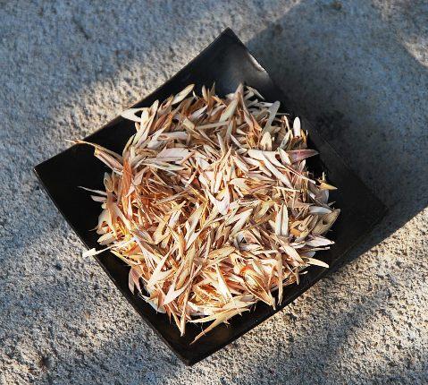 Thai Lemongrass herbal infusion, close-up