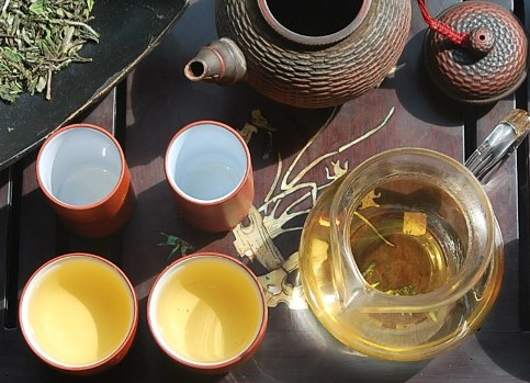 Bai Mu Dan (White Peony) in my Gong Fu Cha Tea Ceremony
