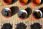 Lapsang Souchong, Zheng Shan Xiao Zhong, Jin Jun Mei Tea – all the same?