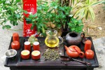 Ruan Zhi Oolong No. 17 and what makes it the Queen of the Thai Oolong Teas