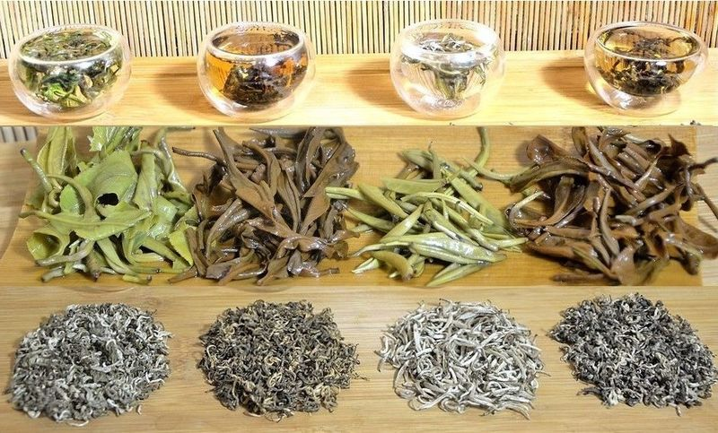 4 Ancient Snow Shan Teas from Vietnam - green tea, black tea, Snow Shan silver needle and Pai Hao Vietnam tea
