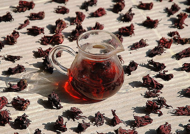 Roselle-Hibiscus_calyxes&infusion